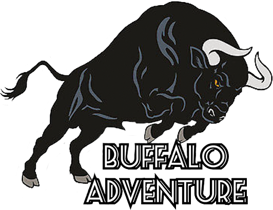 Buffalo Adventure